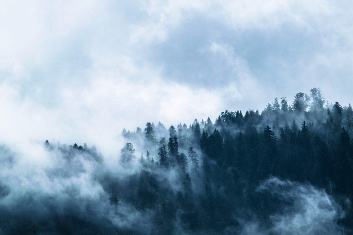 El comentario de Gerbino: Sombras chinas y niebla alemana